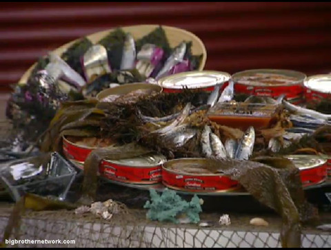 Big Brother 13 sardines and seaweed