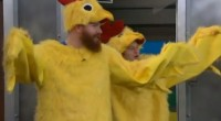 Two chickens walk in to Big Brother 15