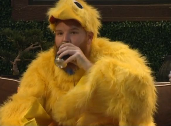 A chicken drinking beer