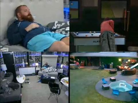 BB15-Live-Feeds-0908-main