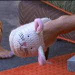 BB16-0708-Caleb-slippers