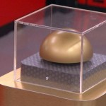 Big Brother 16 - Gold Button twist