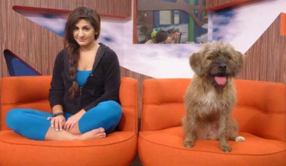 Izzy takes her turn in the Big Brother nomination chairs