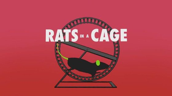 Rats In A Cage on Big Brother 18