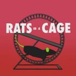 Rats in a cage - BB18 promo