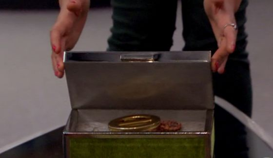 Big Brother Veto medallion back in the box