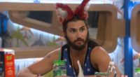 Victor the fox on BB18