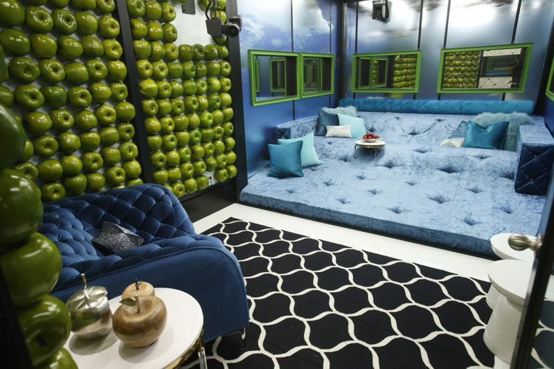 Big Brother 19 Lounge 01