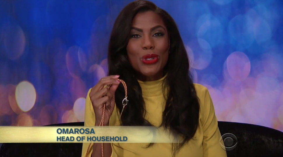 Big Brother Daily - Daily Recaps