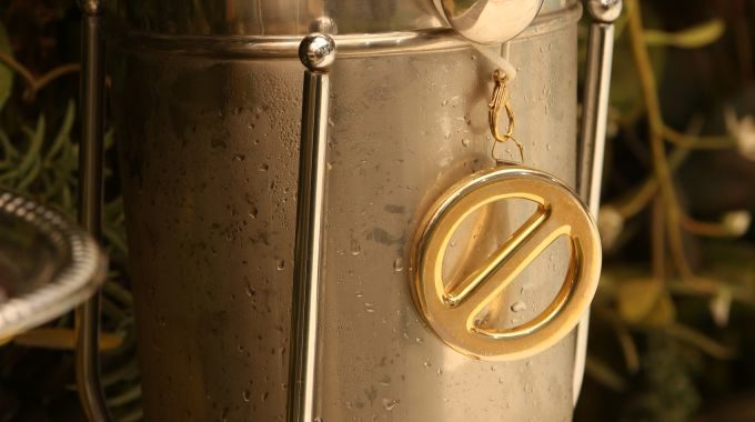 Power of Veto medallion on Big Brother